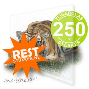 RESTSTUK TIJGERGLAS / LEXAN HELDER
