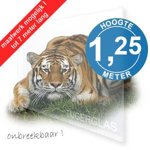 TIJGERGLAS / LEXAN HELDER 125cm