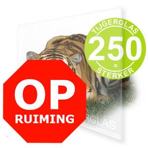 OPRUIMING TIJGERGLAS / LEXAN HELDER